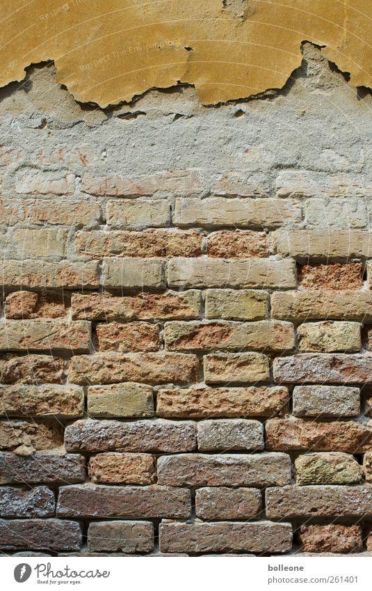 Ein Stück Venedig Ferien & Urlaub & Reisen Italien Stadt Architektur Mauer Wand Stein Backstein alt Armut dreckig braun Verfall Vergangenheit Vergänglichkeit