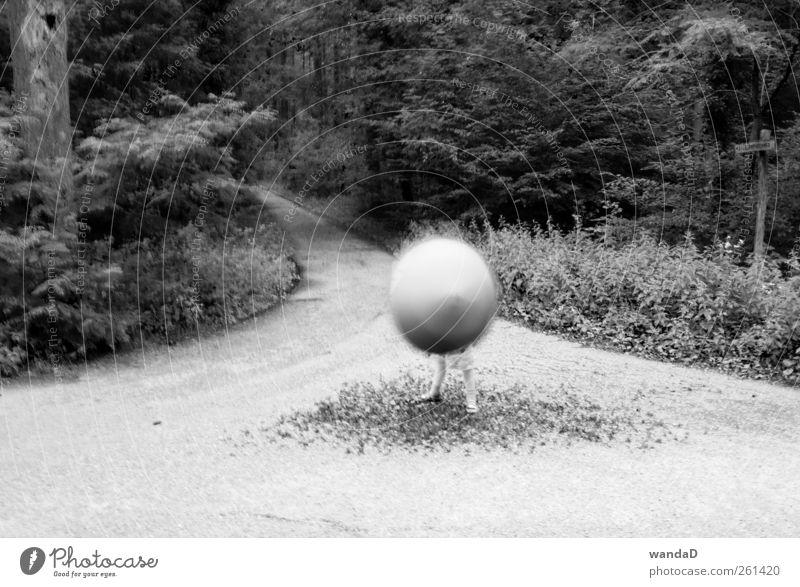 ________________ Kindheit Beine Fuß 1 Mensch Natur Erde Luft Sommer Schönes Wetter Baum Gras Wald Regenschirm Kugel drehen Spielen stehen außergewöhnlich