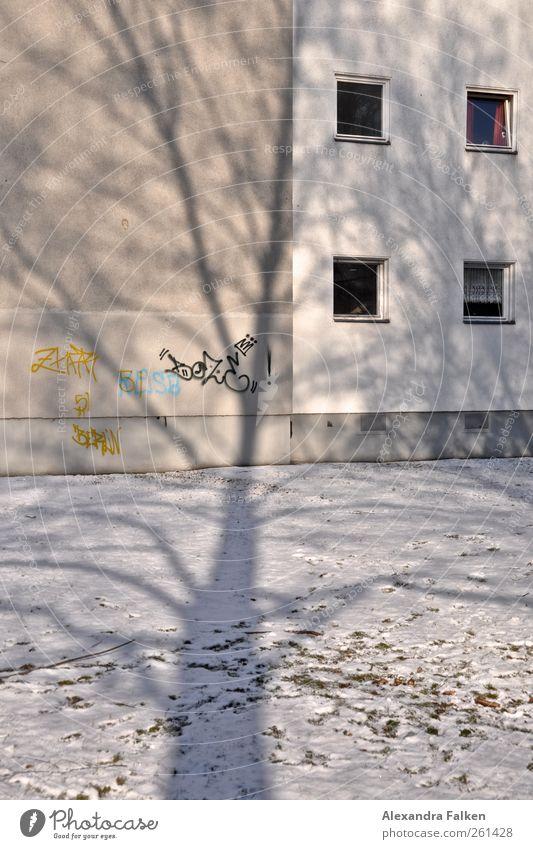 Baum fällt auf Haus. Haus Winter kalt Graffiti Autofenster Berlin Häusliches Leben Klima hoch Zeichen Symbole & Metaphern Etage Nachbar Zweige u. Äste Stadthaus Grafik u. Illustration