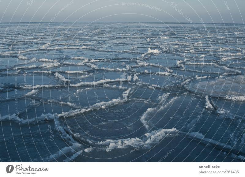 Eismeer Natur Landschaft Horizont Winter Klima Klimawandel Frost Ostsee Meer Schwimmen & Baden kalt blau Im Wasser treiben Eisscholle gefroren knirschen