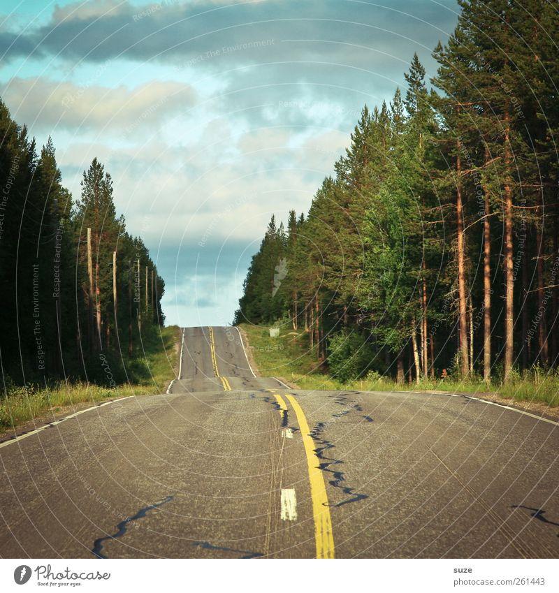 Finnland Himmel Natur Sommer Wolken Wald Straße Umwelt Landschaft Wege & Pfade Klima Verkehr authentisch Schönes Wetter Verkehrswege unterwegs Skandinavien