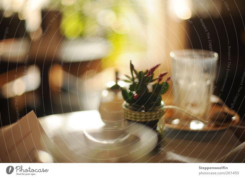 im Café. Kuchen Dessert Zuckerspender Zuckerstreuer Getränk Heißgetränk Kaffee Latte Macchiato Tee Geschirr Glas Besteck ästhetisch reich schön süß braun gelb