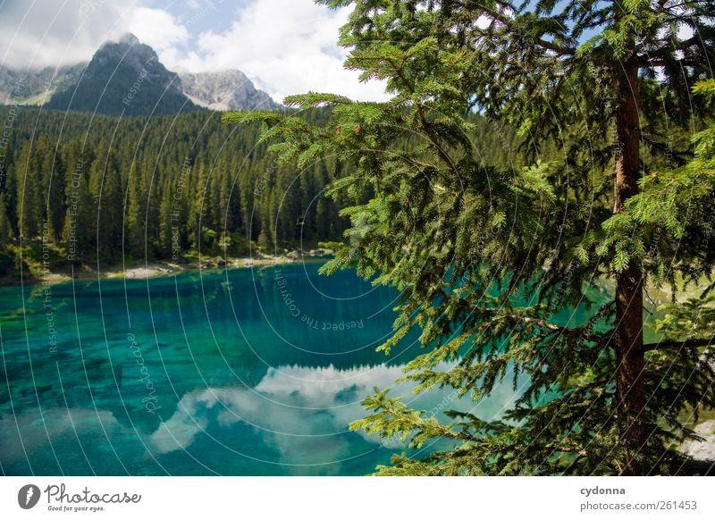 Karer See Natur blau Wasser Baum Ferien & Urlaub & Reisen Sommer Einsamkeit ruhig Wald Ferne Erholung Umwelt Landschaft Berge u. Gebirge Freiheit