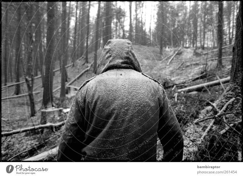Im Wald Mensch Mann Natur weiß Baum Winter Erwachsene Schnee Schneefall Wetter maskulin Jacke Kapuze Forstwirtschaft Parka