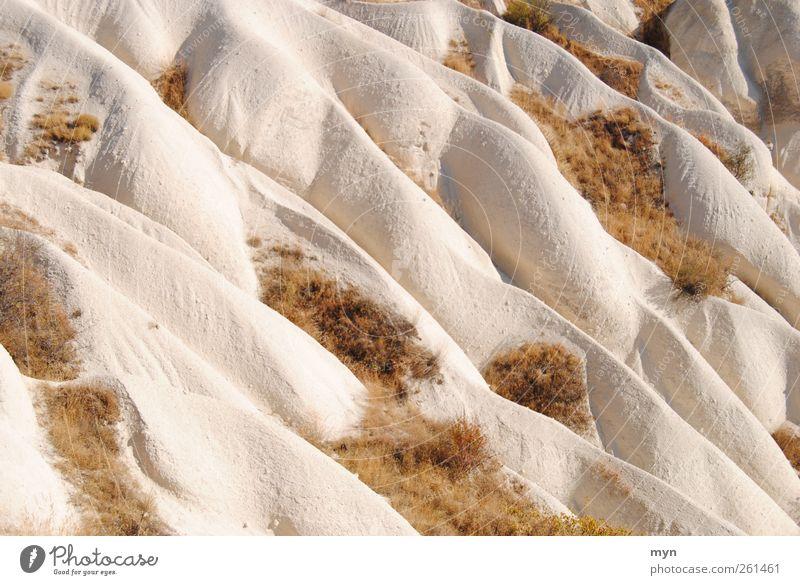 Kappadokien Ferien & Urlaub & Reisen Abenteuer Ferne Wellen Berge u. Gebirge wandern Natur Landschaft Erde Sand Gras Sträucher Hügel Felsen Schlucht Stein