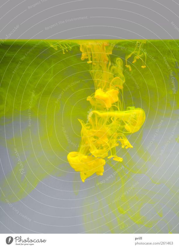 colorful contamination grün Wasser Wolken gelb Farbstoff Beleuchtung Hintergrundbild grau dreckig Textfreiraum Wissenschaften Flüssigkeit Physik abstrakt