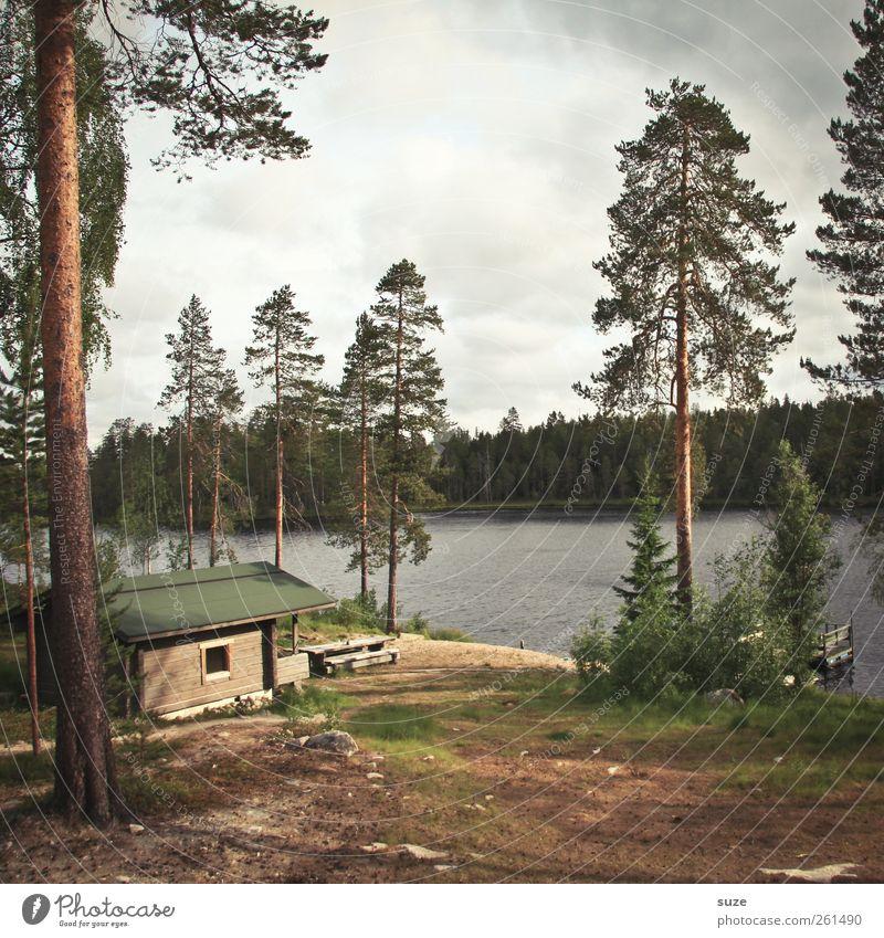 Das Bärenhaus Himmel Natur grün Baum Pflanze Wolken Einsamkeit Wald Umwelt Landschaft See braun Wetter Erde Urelemente Idylle