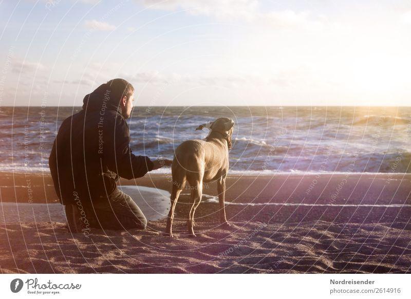 Meeres rauschen Leben harmonisch Sinnesorgane Ferien & Urlaub & Reisen Ferne Freiheit Strand Mensch maskulin Junger Mann Jugendliche Urelemente Wasser Sonne