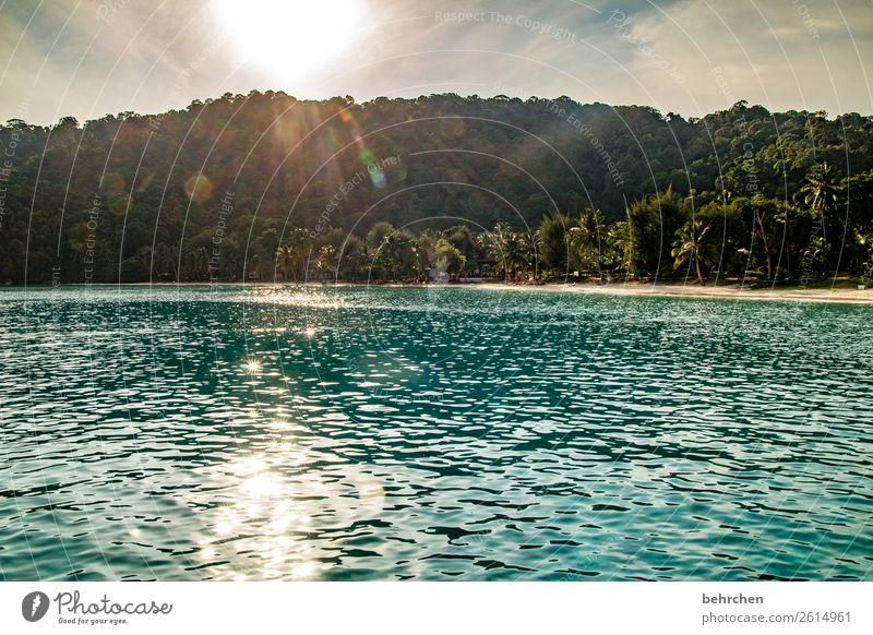 lass die sonne in dein herz entspannung Erholung entspannen erholen Romantik Palme Trauminsel Paradies Urwald Insel Asien Landschaft Malaysia perhentian besar