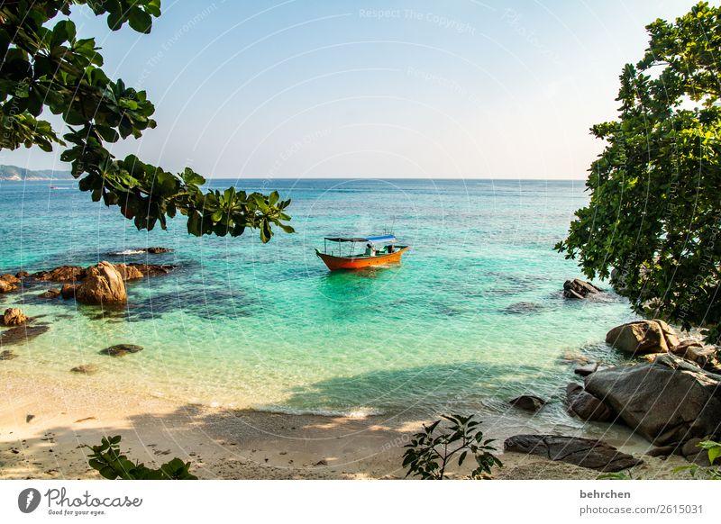 gelassenheit Ferien & Urlaub & Reisen Natur schön Landschaft Baum Meer Erholung Blatt Ferne Strand Küste Tourismus außergewöhnlich Freiheit Felsen