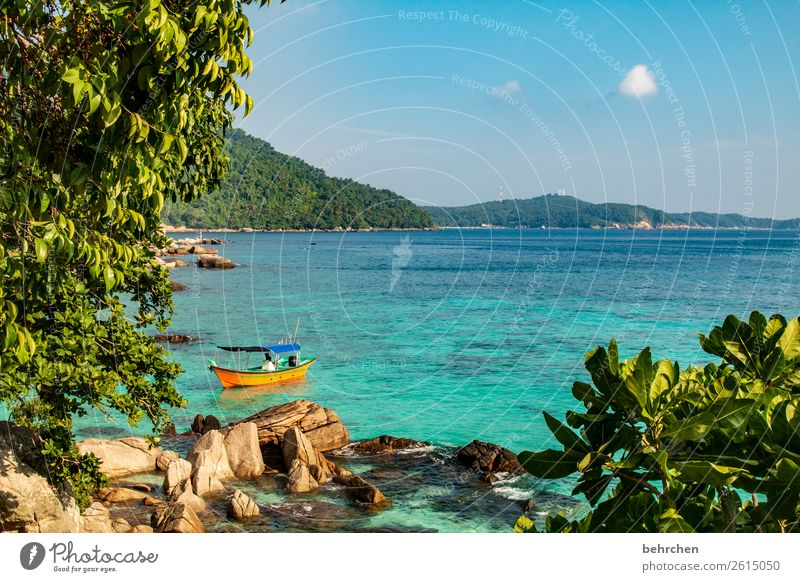 wölkchen Himmel Ferien & Urlaub & Reisen Natur Landschaft Baum Meer Erholung Wolken Blatt Ferne Strand Küste Tourismus außergewöhnlich Freiheit Felsen