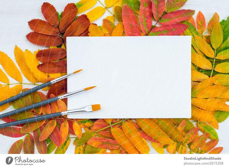 Pinsel und weiße Leinwand auf buntem Blatthintergrund Design schön Freizeit & Hobby Basteln Handarbeit Garten Dekoration & Verzierung Bildung lernen