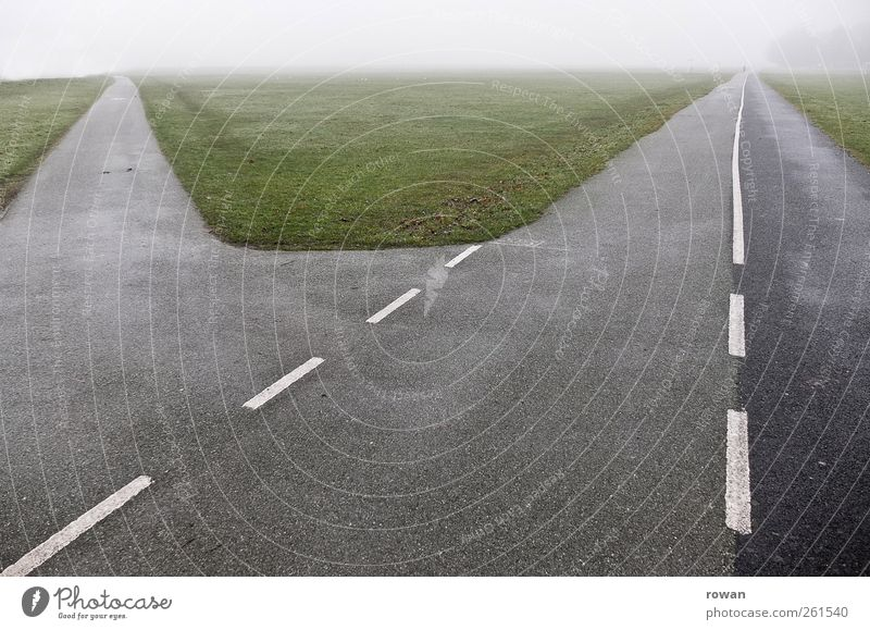 entscheidung Verkehr Straßenverkehr Straßenkreuzung Wege & Pfade Wegkreuzung Abzweigung Entscheidung wählen abbiegen alternativ Umweg Asphalt Gras Perspektive
