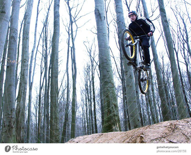 Steilflug Fahrrad Wald springen Trick Geschwindigkeit Hügel Rampe Mut Baum Extremsport Dirt Bewegung Dynamik Erde Bodenbelag Luftverkehr Außenaufnahme