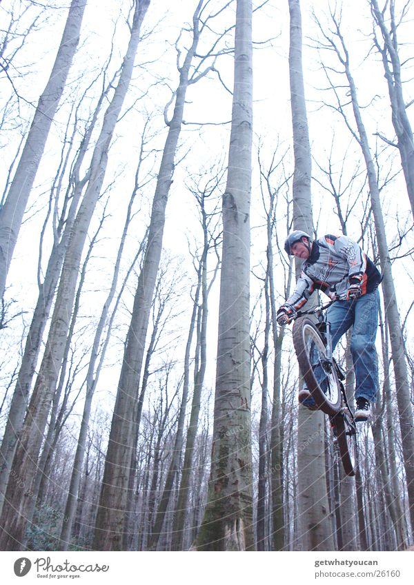 Schrägflug Fahrrad Wald springen Trick Geschwindigkeit Hügel Rampe Mut Baum Extremsport Dirt Bewegung Dynamik Erde Bodenbelag Luftverkehr Außenaufnahme