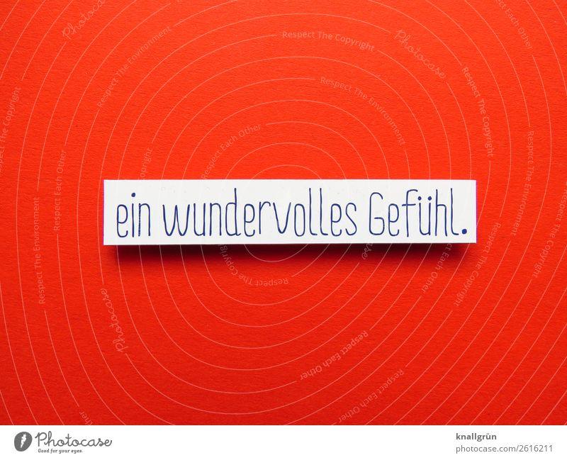 ein wundervolles Gefühl Gefühle Glück Kommunizieren Buchstaben Wort Satz Kommunikation Typographie Text Schriftzeichen Sprache Lateinisches Alphabet