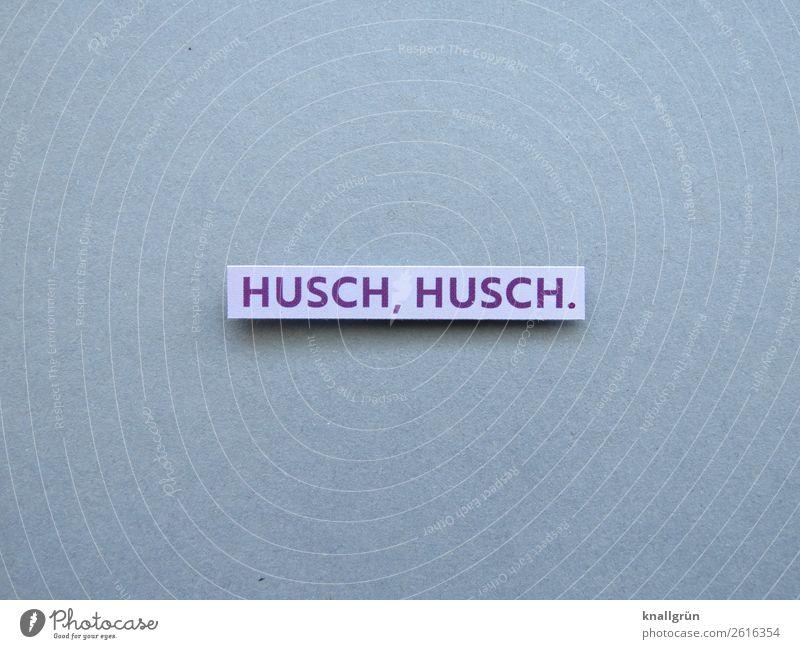 Husch, husch schnell Geschwindigkeit Bewegung Eile rasant rennen antreiben Buchstaben Wort Satz Schriftzeichen Typographie Text Sprache Lateinisches Alphabet