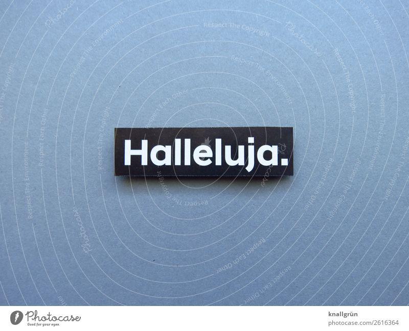 Halleluja Gefühle Religion & Glaube Gott lobpreisen Gebet religiös gläubig Kirche Gotteshäuser hebräisch Christentum Judentum Gottesdienst Katholizismus Himmel