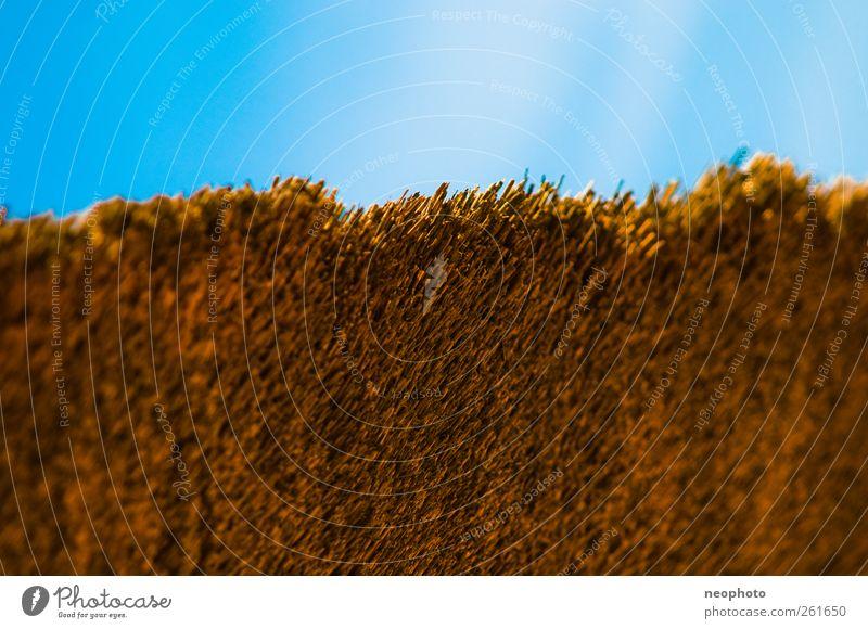 Schmaler Grad Himmel ästhetisch Riedgras Reetdach Ecke Farbfoto mehrfarbig Außenaufnahme Strukturen & Formen Textfreiraum oben Tag Irritation