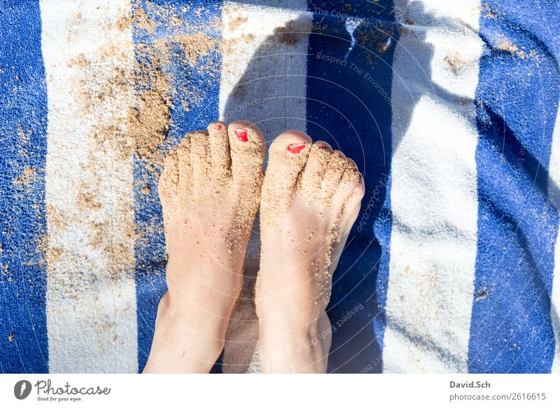 sandige Füße auf blau/ weiß gestreiften Handtuch Frau Mensch Ferien & Urlaub & Reisen Sommer rot Erholung Strand Erwachsene gelb feminin Küste Tourismus Fuß