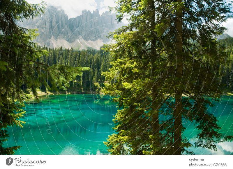 Kaltes klares Wasser Natur blau schön Baum Ferien & Urlaub & Reisen Sommer Einsamkeit ruhig Wald Ferne Umwelt Landschaft Berge u. Gebirge Freiheit See
