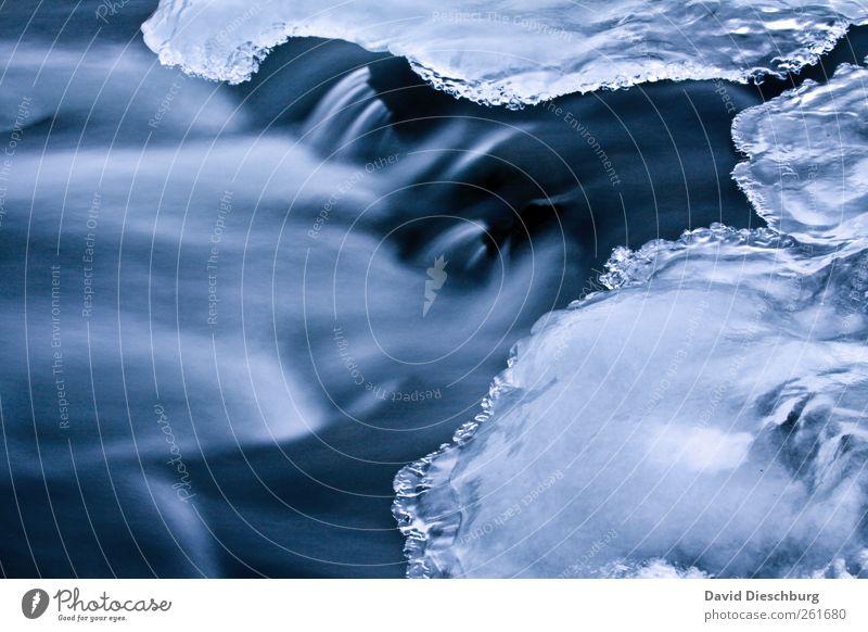Art of winter Natur blau Wasser weiß Winter schwarz kalt Bewegung Eis glänzend außergewöhnlich Frost Fluss gefroren bizarr Wasseroberfläche