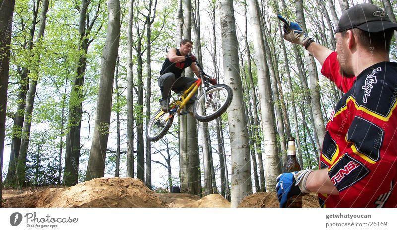 The Fan Baum Sonne Blatt Wald springen Luft Fahrrad Angst Geschwindigkeit Luftverkehr Bier schreien Mut Dynamik Doppelbelichtung Proletarier