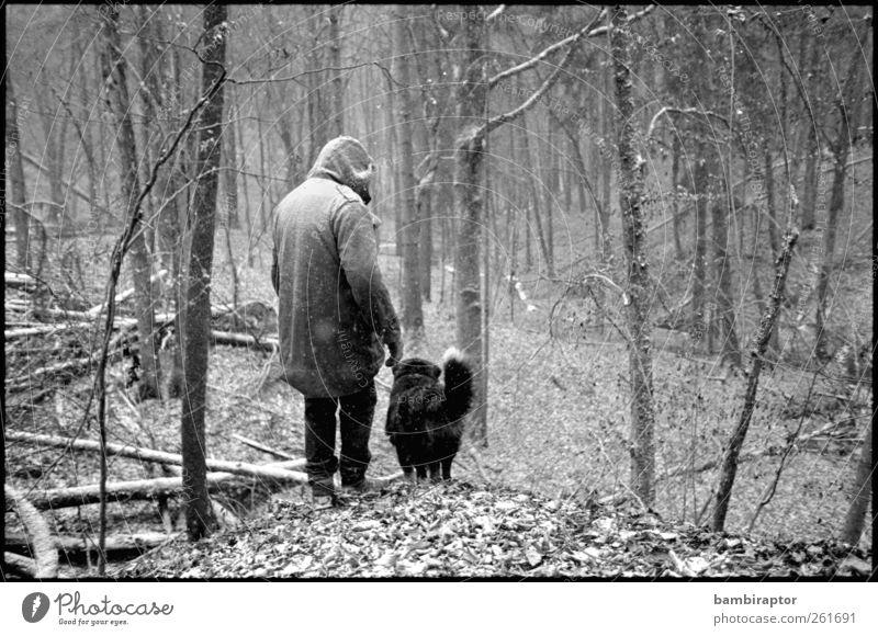 Gefährten Mensch maskulin Mann Erwachsene 1 Umwelt Natur Landschaft Pflanze Baum Sträucher Wald Tier Haustier Hund wandern Stimmung Tierliebe Parka Kapuze