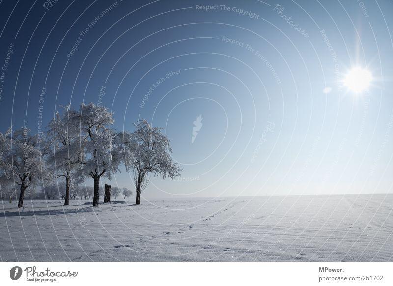 irendwo in thüringen Natur schön weiß Sonne Landschaft Winter Ferne kalt Umwelt Schnee Horizont Eis leuchten Schönes Wetter Frost gefroren