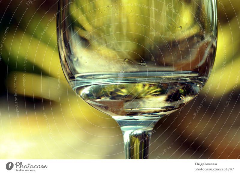 Urlaub ist fast alle Baum Ferien & Urlaub & Reisen Sommer Ernährung Lebensmittel träumen Glas Trinkwasser Getränk trinken Wein Bier Schönes Wetter Tee Hotel