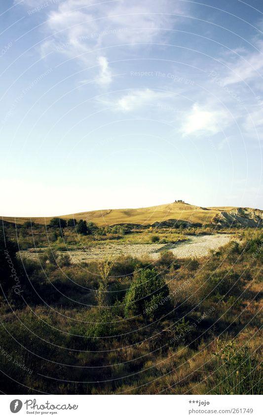 castelvecchio. Natur Baum Ferien & Urlaub & Reisen Sommer Ferne gelb Landschaft Wärme Feld leuchten Fluss Hügel Italien Schönes Wetter trocken Burg oder Schloss