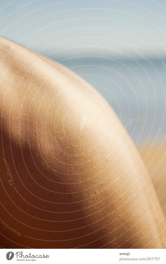 zart Mensch Sommer Rücken maskulin Haut weich Schönes Wetter