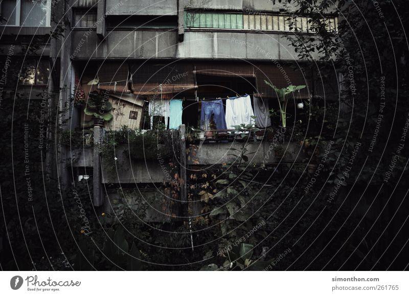 Ghetto Balkon in der Slowakai grün Stadt Haus Ferne Fenster Gefühle grau Garten Tür Fassade Armut Abenteuer Hochhaus trist Baustelle Sträucher