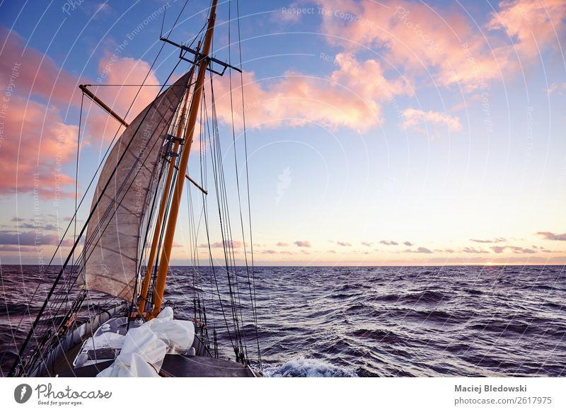 Himmel Ferien & Urlaub & Reisen Sommer Meer Ferne Lifestyle Freiheit Ausflug Horizont genießen Wind Abenteuer Schönes Wetter Expedition Segelboot