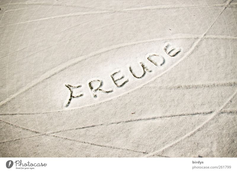 Freude soll sein ! weiß Winter Freude Schnee Gefühle grau See Linie ästhetisch Fröhlichkeit Schriftzeichen leuchten Spuren Freundlichkeit Kurve positiv