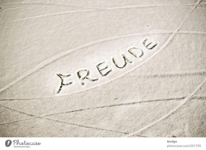 Freude soll sein ! weiß Winter Schnee Gefühle grau See Linie ästhetisch Fröhlichkeit Schriftzeichen leuchten Spuren Freundlichkeit Kurve positiv
