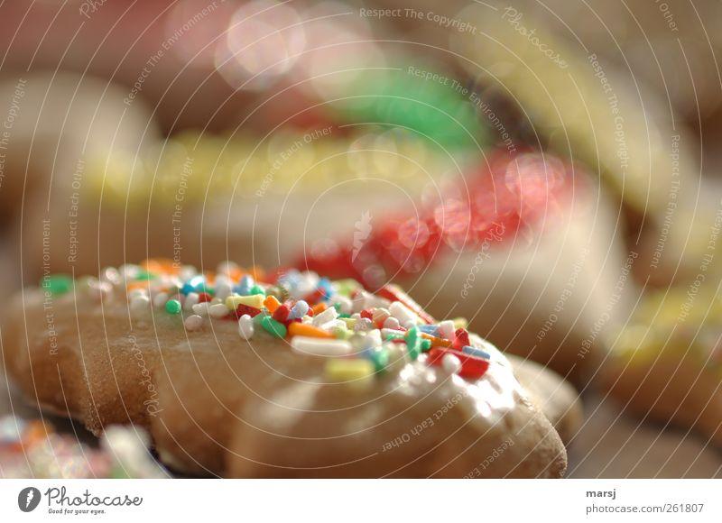 Zuckerstreusel Weihnachten & Advent grün schön rot gelb braun glänzend Fröhlichkeit Dekoration & Verzierung süß gut Kitsch Süßwaren lecker Backwaren Dessert