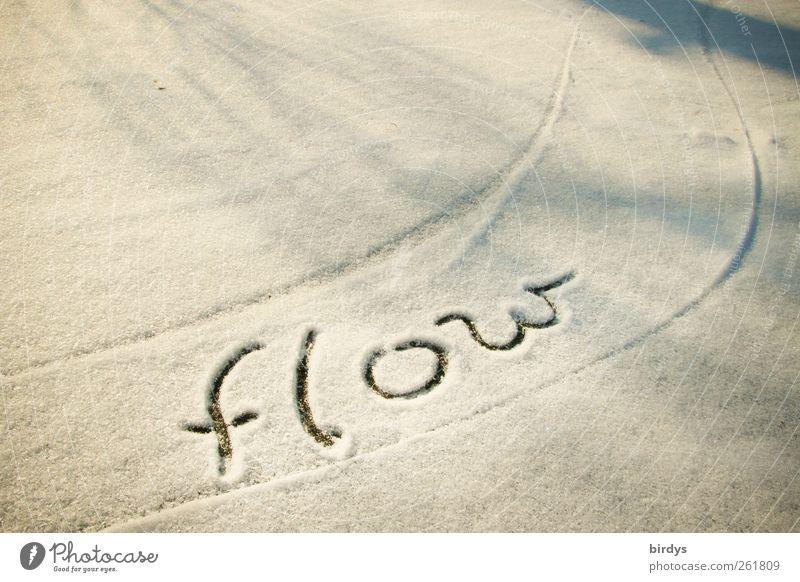 Es fließen lassen weiß Winter Leben Schnee Bewegung grau Linie Energie ästhetisch Schriftzeichen Freundlichkeit Vertrauen positiv Leichtigkeit Wort Inspiration