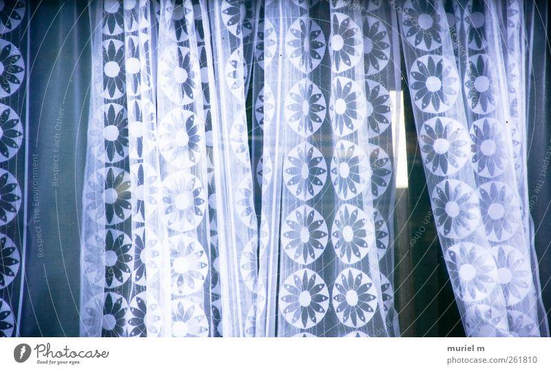 flower curtains Haus Hütte Fenster ästhetisch schön weiß Farbfoto Menschenleer Tag