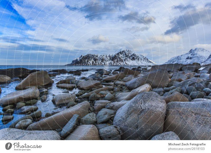 Blick auf den schönen Fjord auf den lofoten Inseln Ferien & Urlaub & Reisen Ausflug Meer Winter Schnee Berge u. Gebirge Umwelt Natur Landschaft Himmel Klima