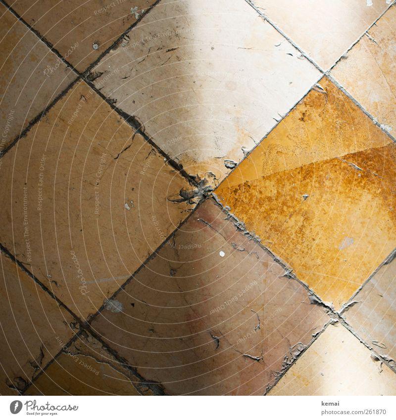 Betretene Zeitzeugen alt Haus gelb orange Innenarchitektur Raum Bodenbelag Boden kaputt Fliesen u. Kacheln Quadrat Riss kariert Renovieren altehrwürdig gebraucht