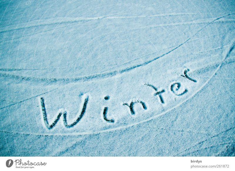 ..der Grund weshalb wir uns auf den Sommer freun Natur blau schön Winter kalt Schnee Bewegung Klima ästhetisch Schriftzeichen Spuren Jahreszeiten Dynamik positiv Wort Hinweis