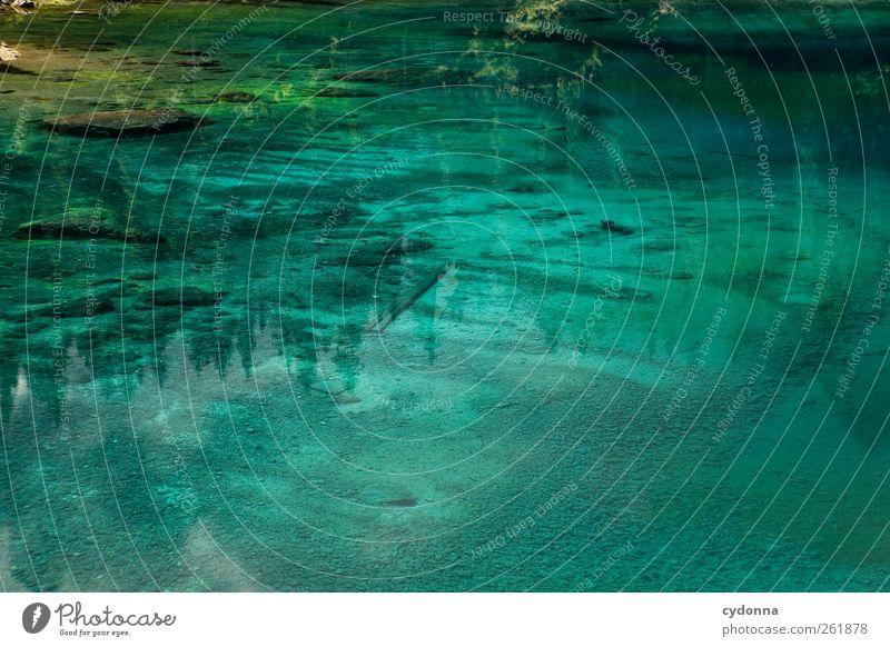 Was siehst du? blau Wasser schön Ferien & Urlaub & Reisen Farbe ruhig Wald Erholung Leben See träumen Abenteuer Tourismus ästhetisch einzigartig Idylle