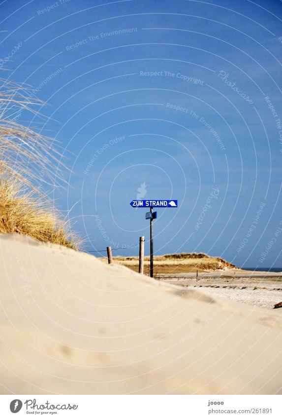 zum Strand Erholung Ferien & Urlaub & Reisen Sommer Sommerurlaub Natur Sand Wolkenloser Himmel Küste Nordsee Wärme Farbfoto Außenaufnahme Textfreiraum oben Tag