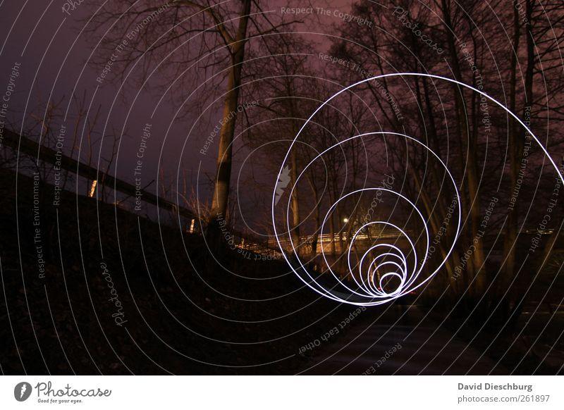 Tunnelblick Baum Pflanze schwarz Wald dunkel Wege & Pfade Linie leuchten Kreis rund violett Spirale Lichtspiel abstrakt Langzeitbelichtung Leuchtspur