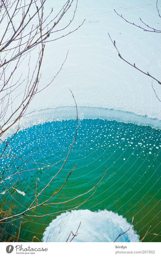 Erfrischung gefällig ? blau Wasser weiß grün schön Winter kalt Schnee See Eis Klima ästhetisch leuchten Frost Romantik