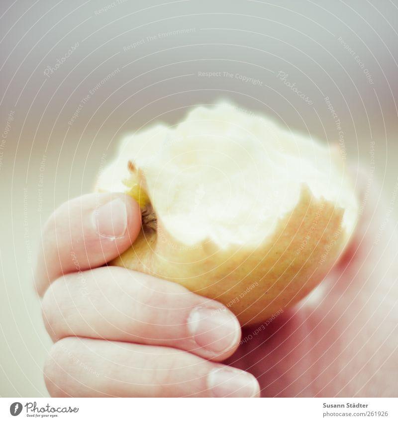Apfel - Yammi Ernährung Lebensmittel Essen Frucht frisch Bioprodukte Diät füttern Vegetarische Ernährung haltend Zahnpflege Apfelernte bissfest