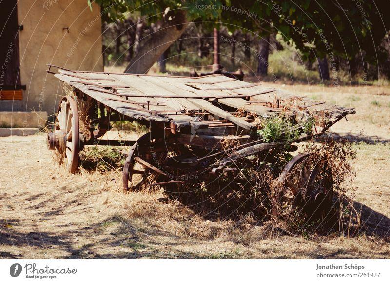 Der Wagen neben dem Haus Ferien & Urlaub & Reisen Ausflug Abenteuer Ferne Sommer Sommerurlaub braun Weingut Landwirtschaft Landwirtschaftliche Geräte Weinlese