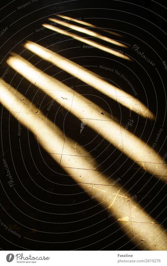 Licht und Schatten Haus Bauwerk Gebäude Architektur Fenster dunkel hell schwarz weiß Bodenbelag Bodenplatten Flur Holzfußboden Krümel staubig Farbfoto