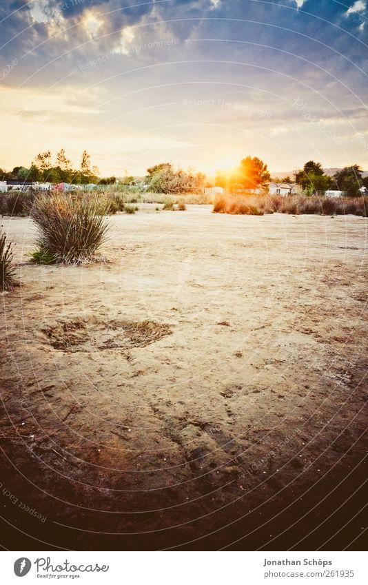 Sonnenuntergang Zufriedenheit Erholung ruhig Ferien & Urlaub & Reisen Abenteuer Ferne Freiheit Sommer Sommerurlaub Strand Umwelt Natur Landschaft Klima